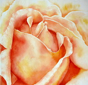 Rosebud Paintings - Rosebud by Thomas Habermann