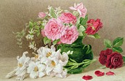 Vase Paintings - Roses and Lilies by Mary Elizabeth Duffield