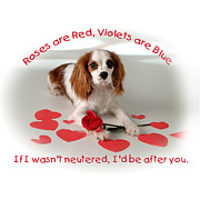 Neutered Art - Roses are Red by Diane Hagler