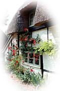 Terri Waters Posters - Roses Around The Window Poster by Terri  Waters