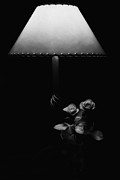Lamplight Framed Prints - Roses by Lamplight BW Framed Print by Ron White