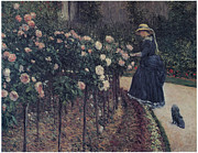 Beautiful Flowers Paintings - Roses Garden at Petit Gennevilliers by Gustave Caillebotte