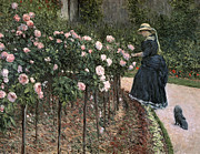 Woman In Hat Framed Prints - Roses in the Garden at Petit Gennevilliers Framed Print by Gustave Caillebotte
