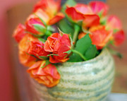 Peach Roses Photos - Roses by Lisa  Phillips