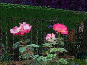 Gestures Mixed Media Framed Prints - Roses Of South Pasadena 1 Framed Print by Kenneth James
