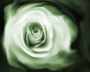 Rose's Whispers Green Print by Jennie Marie Schell