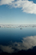 Refelctions Photos - Ross Sea Antarctica by Carole-Anne Fooks