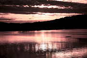 Reflective Water Photos - Rosy Sunset by Bonnie Bruno