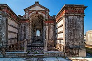 Metairie Cemetery Photos - Roughing It by Steve Harrington