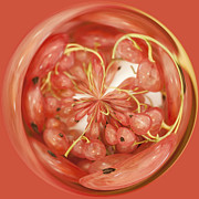 Digital Manipulation Art Photos - Round Whitecurrants by Anne Gilbert