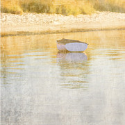 Rowboat In The Summer Sun Print by Carol Leigh