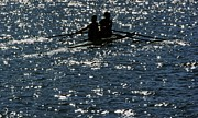 Two Men Rowing Posters - Rowers Silhouetted Poster by HelloWorld  Images