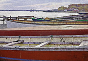 Carol Sutherland - Rowing Club