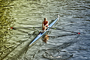 Sculling Prints - Rowing Crew Print by Bill Cannon