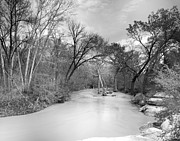 Tx Photos - Rowlett Creek by Darryl Dalton
