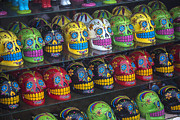 Skulls Photos - Rows of skulls by Garry Gay