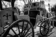 Kathleen K Parker - Royal Carriage and Mule New Orleans - Black and White