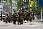 Household Cavalry Posters - Royal Horse Guards Of The Cavalry Poster by Andrew Chittock