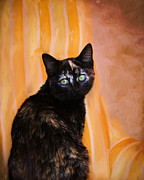 Tortoiseshell Prints - Royal Kitten Print by Jai Johnson
