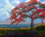 Maria Soto Robbins Prints - Royal Poinciana Morning Print by Maria Soto Robbins