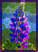 Royal Art Mixed Media Prints - Royal Purple Lupine Flower Abstract Art Print by Omaste Witkowski