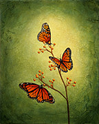Monarch Butterfly Paintings - Royal Trio by Sandra Tweed