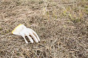 Rubber Glove In The Field Print by Ruud Morijn
