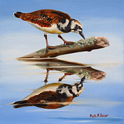 Rudy Prints - Ruddy Reflection Print by Phyllis Beiser