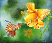 Fauna Painting Metal Prints - Rufous Hummer and the Lily Metal Print by Phyllis Beiser
