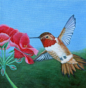 Fran Brooks - Rufous Hummingbird