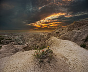 Aaron J Groen - Rugged Beauty