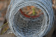 Rugged Wire Fencing Print by Patricia Twardzik