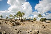 David Morefield - Ruins at Armageddon