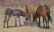 Wild Horses Drawings Originals - Rule of Three by Susan Monty
