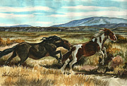 Pinto Painting Originals - Run Little Horse by Linda L Martin