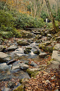 Gatlinburg Tennessee Prints - Run Off Print by Heather Applegate