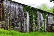 Rundown Barn Framed Prints - Rundown Old Barn Framed Print by Bill Cannon