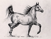 Horse Drawings - running  Bay arabian horse  by Angel  Tarantella