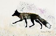 Anderson R Moore - Running Fox