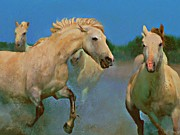 Wild Horses Mixed Media Posters - Running Free Poster by Donna Johnson