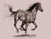 Mane Drawings - Running horse by Derrick Higgins