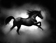 Stampede Digital Art - Running Horse by Robert Foster