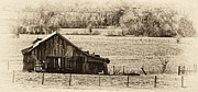 Barbed Wire Fences Framed Prints - Rural Dreams Framed Print by Greg Jackson