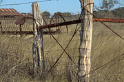 Old Fence Posts Photo Posters - Rural Retirement  Poster by Joe Jake Pratt