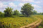 Aleksandr Volkov - Rural road landscape