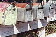 Mailboxes Photos - Rural Route by Caitlyn  Grasso