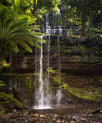 Kim Andelkovic - Russell Falls
