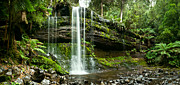 Tasmania Prints - Russell Falls Mount Field National Park Central Tasmania  Print by Ulrich Schade