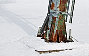 Ply Photos - Rust and Snow by Cister Vengue