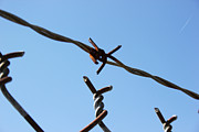 Barbed Wire Fences Prints - Rust Print by Kelly Hazel